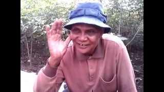 Download Video kakek kakek ini Ketahuan lagi berbuat di kebun MP3 3GP MP4