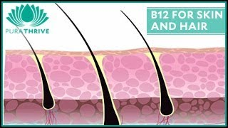 B12 for Skin and Hair Health: PuraTHRIVE - Thomas DeLauer