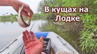 Рыбалка на удочку с лодки Рыбы много вода кипит Здесь водится щука
