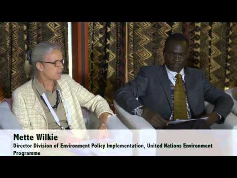 Collaborative Partnership on Forests: Towards a vision on forests in the post-2015 era