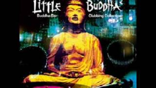 Little Buddha II - Sam Popat - Opera house  (Working On My Roots Mix)