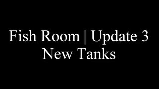 ** Discus Fish Room | Update 3 | New Custom Made Fish Tanks **
