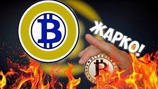 Жаркие новости криптовалют. Биткоин за полмиллиона. Bitcoin Gold уже в ТОП 5! Bittrex повышает цену