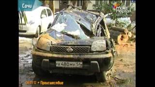 На автомобиль в центре Сочи упало дерево(, 2012-03-06T16:48:42.000Z)