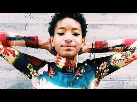 Willow Smith Posted a 'Topless' Photo on Instagram and Everyone Freaked Out