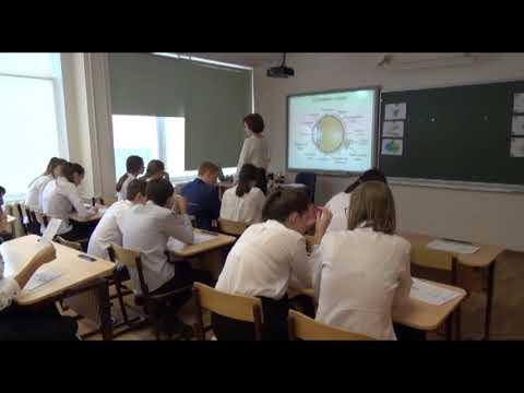 Конкурсное мероприятие «Учебное занятие», Суркова Елена Александровна