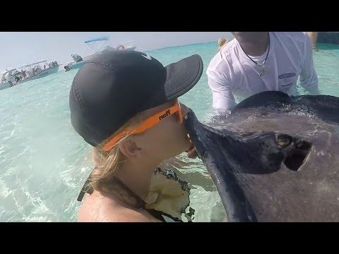 WE KISSED A STINGRAY !! STINGRAY CITY GRAND CAYMAN!