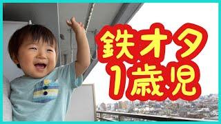 【Short vlog】電車オタクな1歳児が自宅から京急線と車を見る