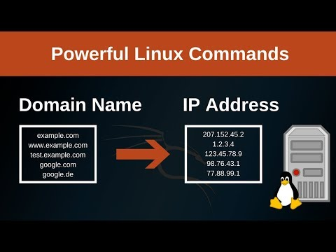 Domain Name To IP Address With Linux