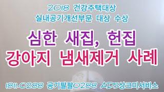 심한 강아지 냄새제거 새집, 헌집 2가지 사례 / 5대…