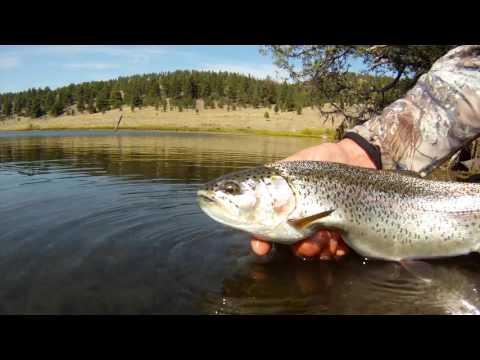How To Fish PowerBait Effectively Scott Haugen Trout Tips