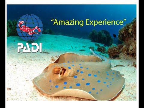 Scuba Diving Andaman Sea 2016 - PADI Open Water Course [GoPro HD]