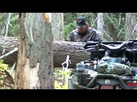 B.C.Mountain Goat Hunting