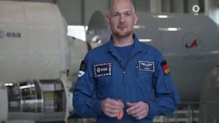 Die Sendung mit der Maus - Vorbereitungen für das Maus-Experiment mit Alexander Gerst