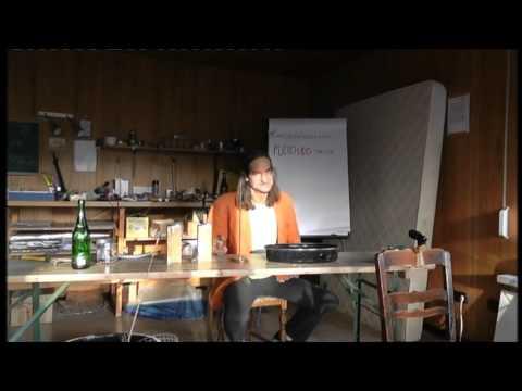 Schollis Ansage zum Keshe Projekt Die Politik hat bei Freier Energie ausgedient