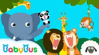 Animal Paradise | Learn Animals for Children | Animal Games | Kids Games | Gameplay Video | BabyBus