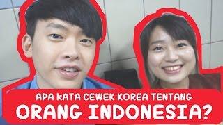 Apa kata CEWEK KOREA tentang ORANG INDONESIA? | Korea Vlog 3 | COWOK KOREA