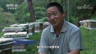 《乡土中国》 20201226 大国脱贫 CCTV农业 - YouTube