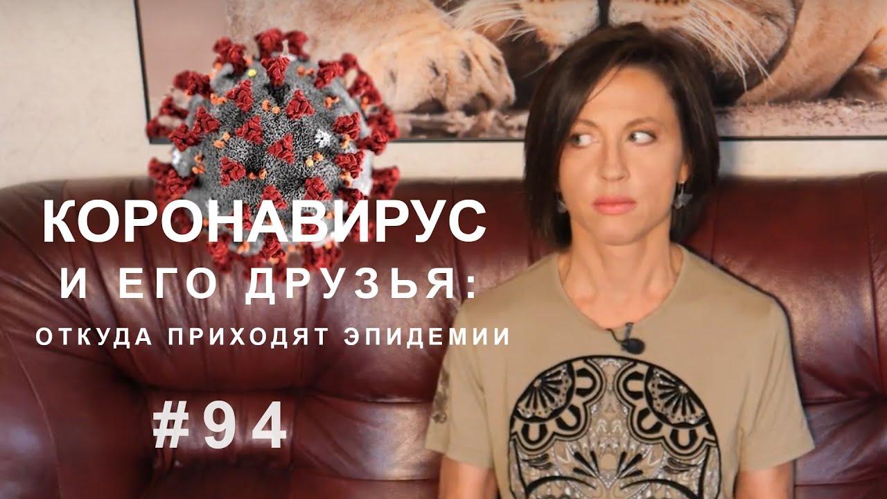 Коронавирус и его друзья: откуда приходят эпидемии // ВКУЗ 94