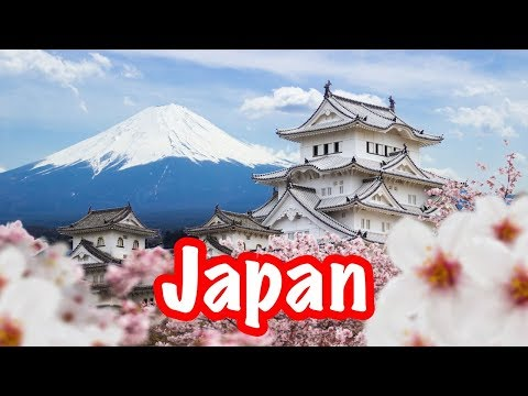 Travels in Japan (Part One) + Psychologist Appointment