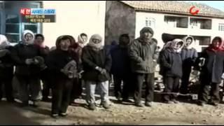 북한매춘실태