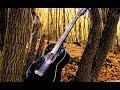 Песни под гитару Хочешь я прибегу ПЕТЛЮРА mp3