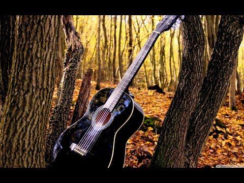 """Песни под гитару - """"Хочешь я прибегу""""(ПЕТЛЮРА)"""