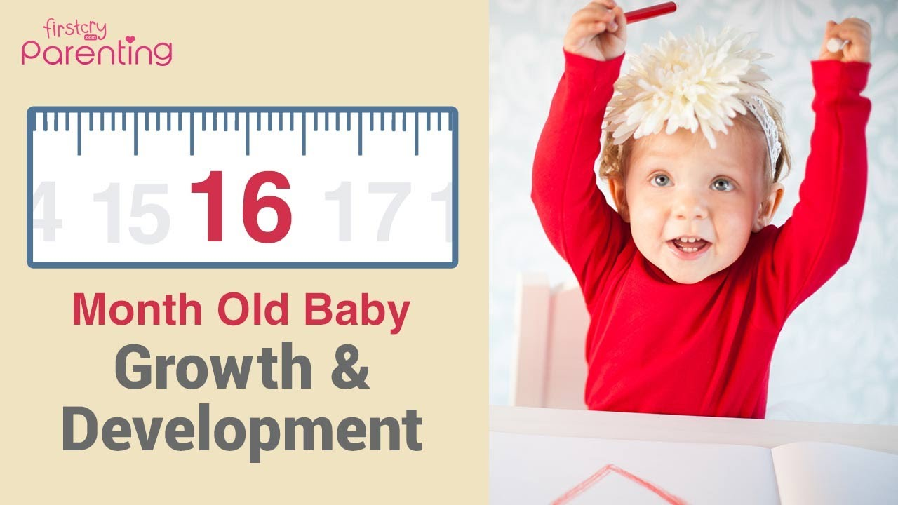 Your 16 Month Old Baby's Growth & Development