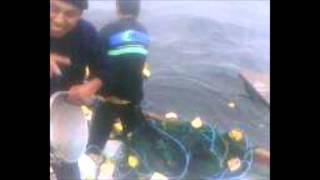 Pesca y tragedia en altamar