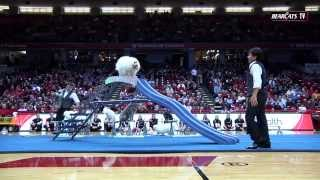 Nc State Halftime Performance : The Olate Dogs