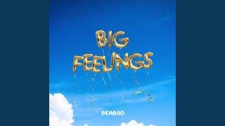 Play Big Feelings