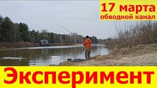 Рыбалка на фидер весной в марте Киевская область под Києвом обводной канал 2021 Лебедевка Хотяновка