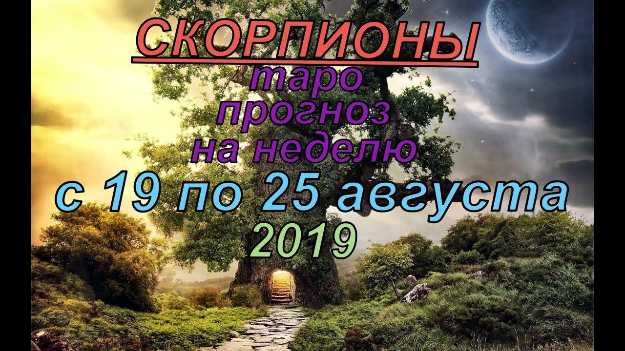 Гороскоп Скорпионы с 19 по 25 августа.2019