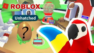 ROBLOX-opening 5 jungle eggs!! Did I get the Macaw? um...