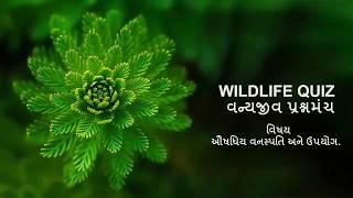 MOST IMP AUSHADHIYA VANASPATI औषधीय वनस्पति ઔષધીય વનસ્પતિઓ
