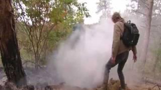 155 hectare natuurgebied verwoest bij brand Schoorl