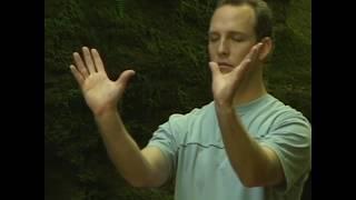 Комплекс Цигун для начинающих с Ли Холденом