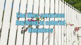 Soundgarden - She Likes Surprises (with Lyrics)