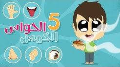 The Five Senses in Arabic for Kids – Learn the five senses in Arabic with Zakaria