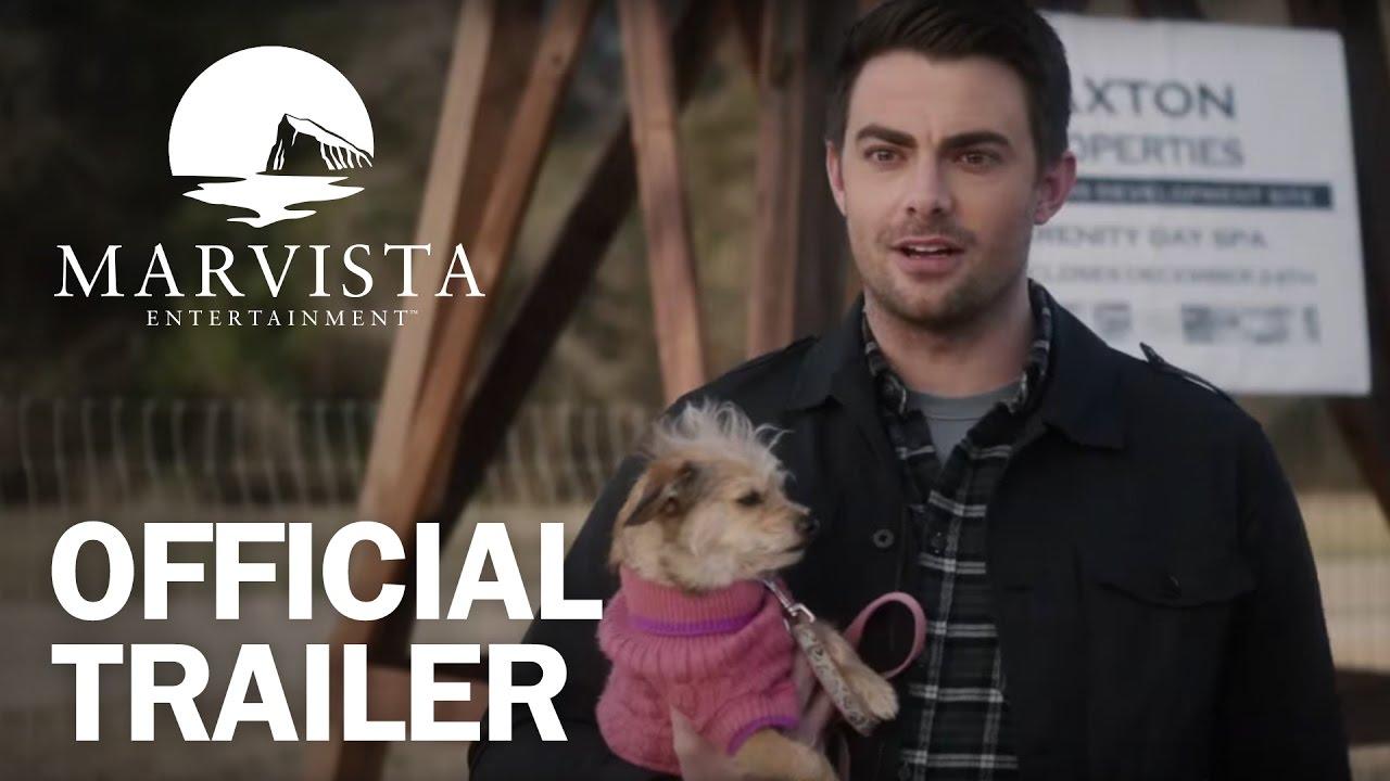 A Dogwalkers Christmas Tale.A Dogwalker S Christmas Tale Official Trailer Marvista Entertainment
