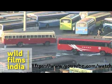 Majestic Bus Station - busiest terminus in Bangalore