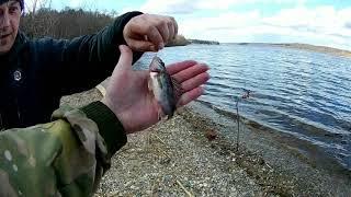 РЫБАЛКА НА ДОНКИ В КАРАНТИН Ловля рыбы сильный ветер Волга