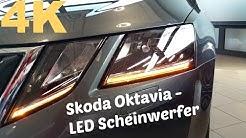 Skoda Octavia 2017 Blinker
