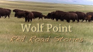 Wolf Point:  Red Road Stories