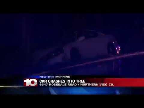 Car crashes into tree