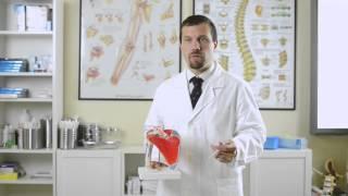 Medici Online - Le lesioni associate della lussazione acromion-claveare