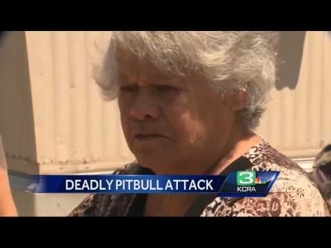 Stockton man dies in pit bull attack