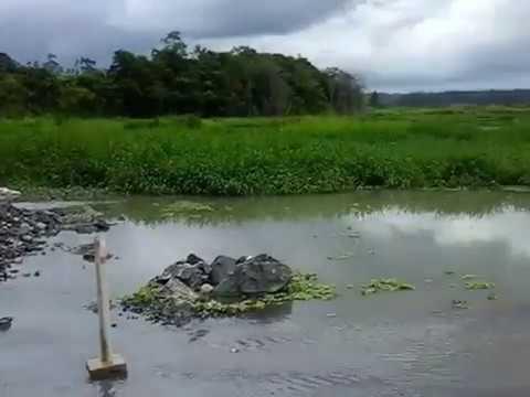 Resultado de imagem para barragem de cajati pode romper