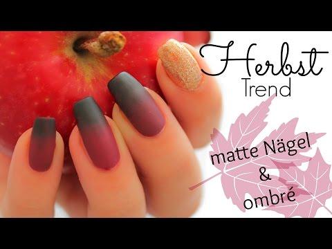 Matte ombré Nails - easy DIY Herbst Trend! I LCN l Nageldesign I Tutorial I gradient Iellylicious♡