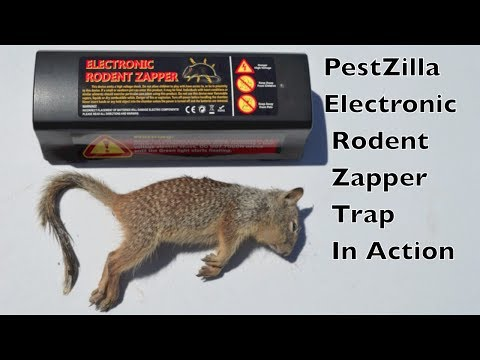 PestZilla Electronic Rodent Zapper Trap In Action - With Motion Cameras